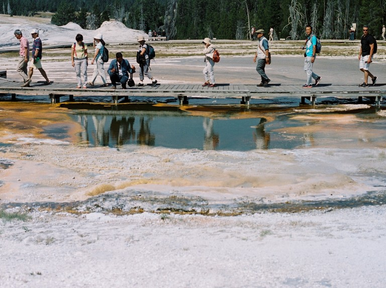 Board Walkers In A Line, Yellowstone National Park