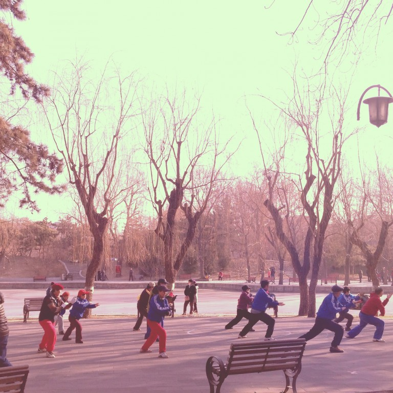 Beijing's Tuan Jei Hu park is a haven for humans young and old, gathering for everything from Tai Chi, dancing and singing to skating, smoking and playing music.