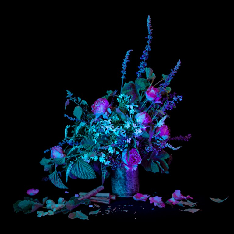 <em>For a Man to Attract a Woman He Desires</em>, 2013 bay berry, bay leaves, black snakeroot, cinnamon, geranium, ginger, rose, vervain Archival Pigment Print, 32